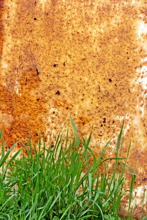 rusting: rusting metal and grass