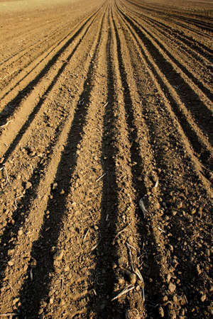 ploughed field Stock Photo - 390451