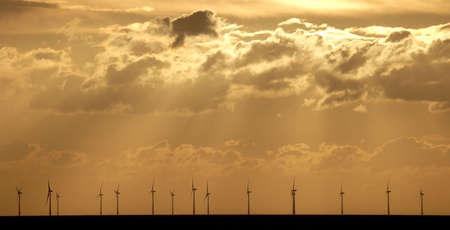 windfarm: offshore windfarm at sunset Stock Photo