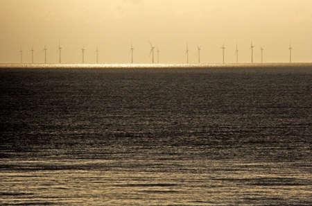 windfarm: parque e�lico en alta mar al atardecer
