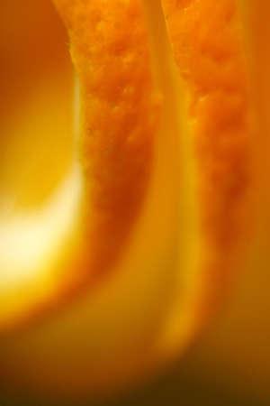 soft focus: enfoque suave cerca de c�scara de naranja  Foto de archivo
