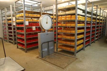 industria alimentaria: queso en almacenamiento en fr�o en los modernos productos l�cteos