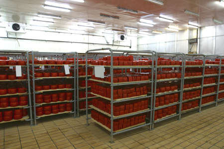 food storage: cheese in cold storage in modern dairy