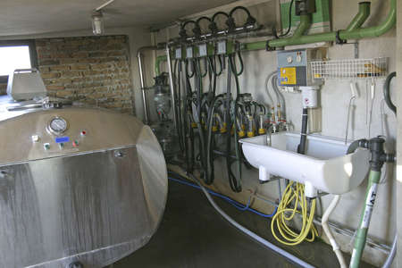 new suction Milking Machines installed on farm photo