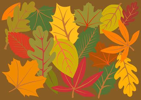 haya: fondo de color las hojas de oto�o  Vectores