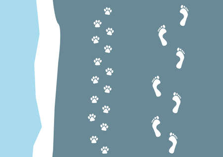 animal track: foot prints of a person and their dog on a beach
