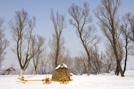 serbia landscape: an old farm cart in the snow
