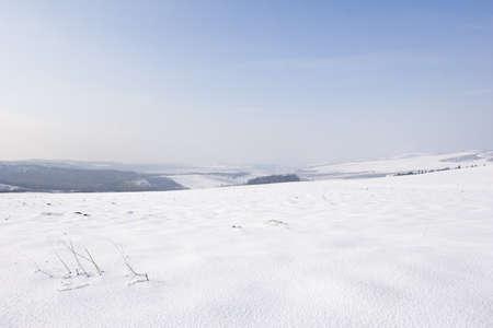 desolate: desolate winter landscape of snow