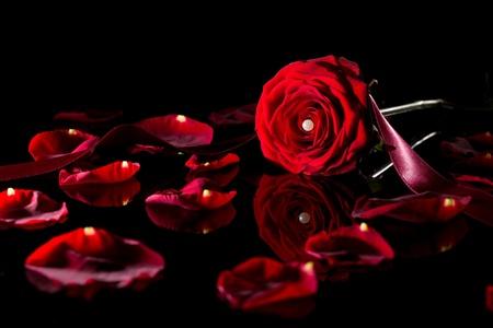 perle: Rose mit Perle und Band auf schwarzem Spiegel