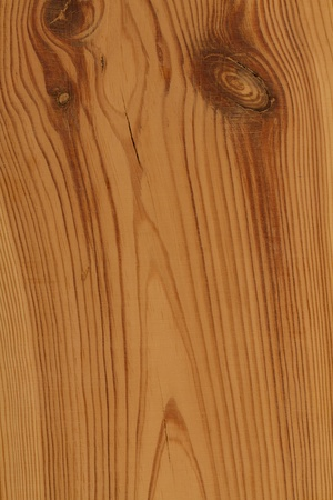 Larch wood texture