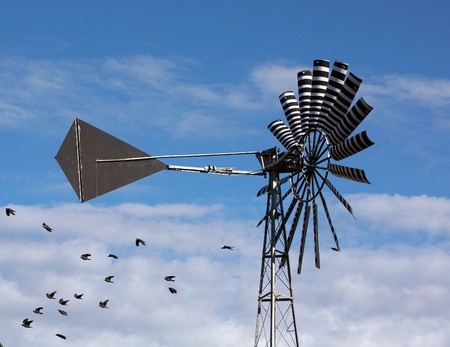 A multi-bladed windpump blue sky and clound with birds  photo