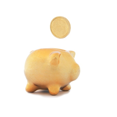 A golden piggy bank with one golden coin on white background  photo