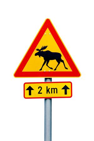 Signe de route d'avertissement d'orignal finlandais sur fond blanc. Un panneau supplémentaire indique un danger pour les 2 km suivants. Banque d'images - 81796252