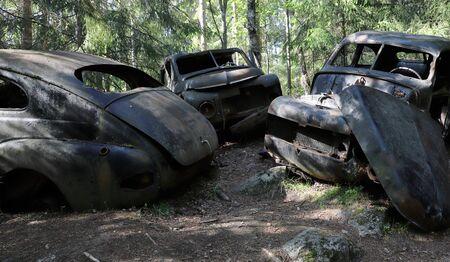 Thre abandoned cars in a de facto car cemetery.