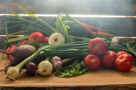 Green onions, garlic, carrots, beet and tomatoes against the background of old grey boards in fog