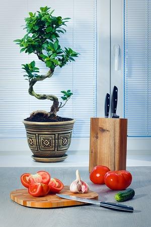 Фикус бонсай возле окна о шторах, помидорах, чесноке, огурце, ножах и разделочной доске