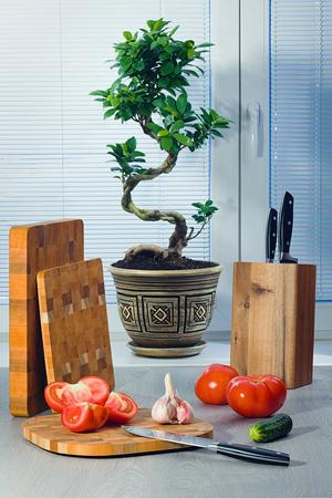 Фикус бонсай возле окна о шторах, помидорах, чесноке, огурце, ножах и разделочных досках Фото со стока