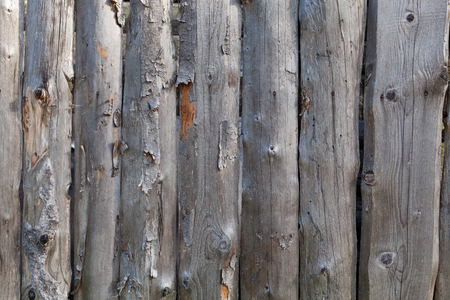 Background in style a rustic from old unpainted vertical boards with knots
