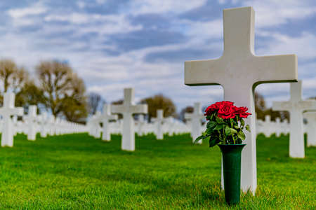 image of one cross with a vase with red roses in the American Cemetery Margraten on a green grass in memory of soldiers killed in the war with a gray sky and trees in the background in the Netherlands