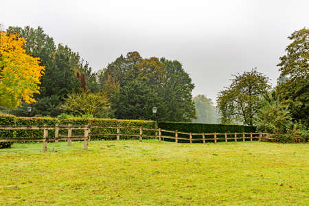 Wooden fence with bushes, leafy trees and street lamps with some fog in the background, day at the beginning of the autumn on a farm, province of Noord-Brabant, the Netherlands Holland