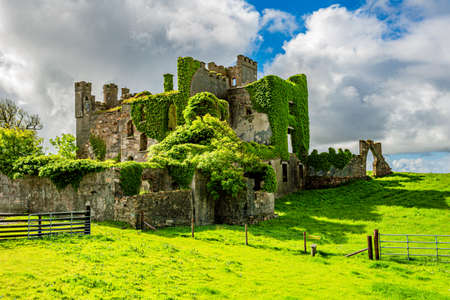 Ruined of Clifden castle with green plants on its walls surrounded by green grass, sunny spring day in the Irish countryside with blue sky and white clouds in County Galway, Ireland