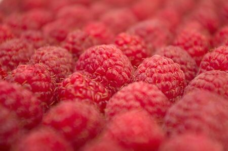 raspberry laid diagonally  picture with a small depth of field photo