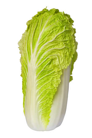 Chinese cabbage isolated on white photo