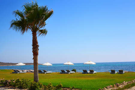 Sunny day on Pafos resort, Cyprus photo
