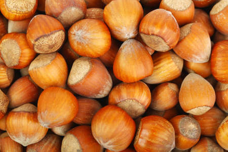 Lots of raw hazelnuts close-up