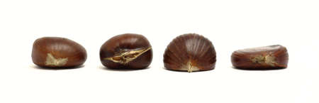 Beautiful arrangement of chestnuts with different structures and sizes