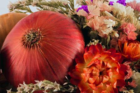 Vackra arrangemang av lök med torkade fältblommor Stockfoto