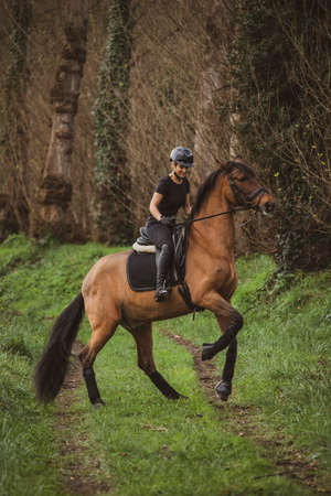 Female rider dressed in black with her brown horse riding along a country road