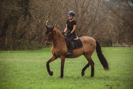 Female rider dressed in black with her brown horse riding through a green meadow with trees