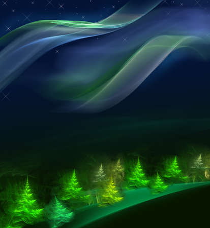 Christmas fur-tree in the night forest. Series fractal world photo