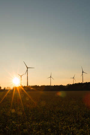 bioenergy: Wind turbines in the sunset, in the Bioenergy park Saerbeck