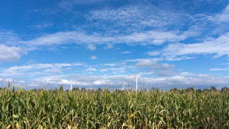 Wind turbine in front of blue sky