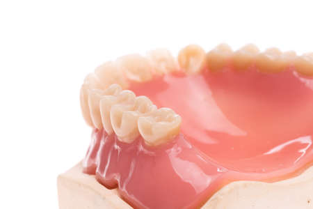Denture with mouth mirror, denture model