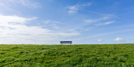 Empty park bench on green meadow with dandelion, and blue sky Standard-Bild - 116279647