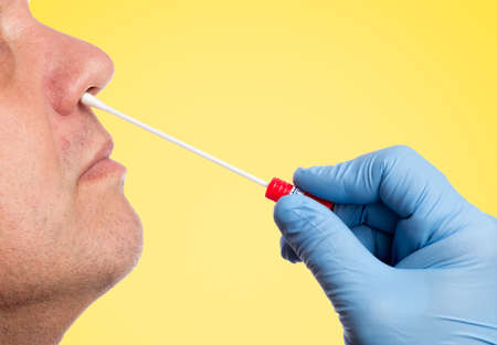 Doctor makes with a cotton swab a nasal swab test Standard-Bild