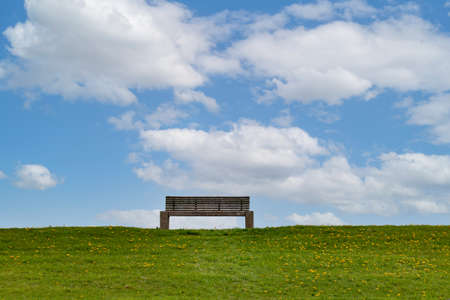 Empty park bench on green meadow with dandelion, and blue sky