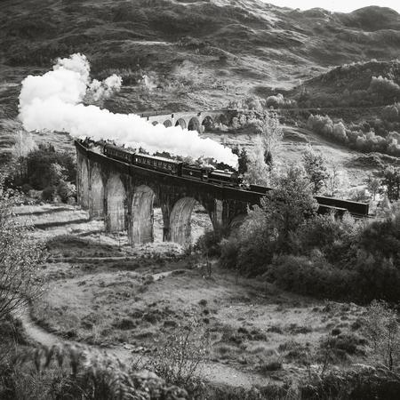 steam train: Historical Steam Train is crossing a Viaduct