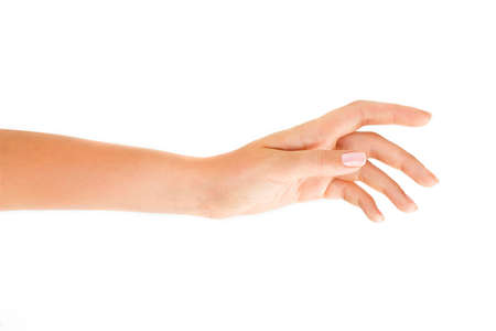 Beutiful womans hand on the white background