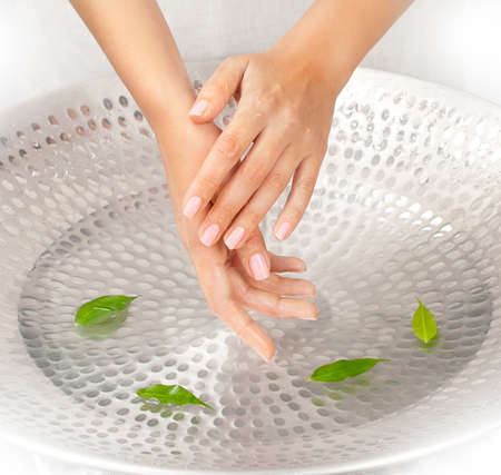 Womans hands under the sink with water and green leaves photo