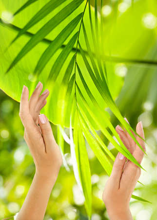 Beautiful Female Hands on the green background of a tropical forest