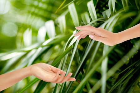 Beautiful Female Hands on the green background of a tropical forests leaves