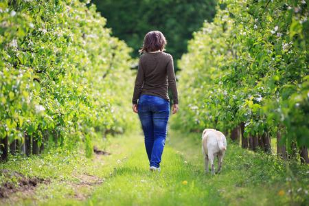 dog days: Mujer paseando con su perro en el huerto