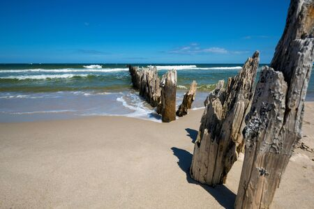 groynes: Old wooden breakwater over the Baltic Sea on a sunny day