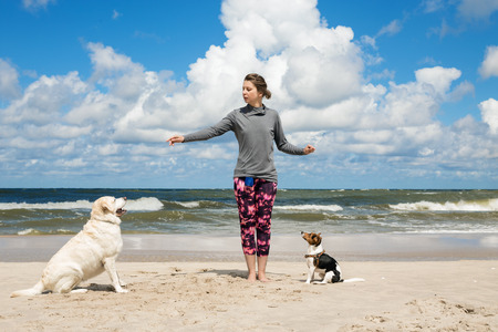 Woman training dogs on the beach Stock Photo