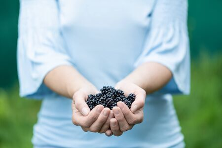 A woman holding blackberries in her hands