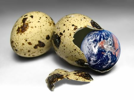 born world out of egg Stock Photo